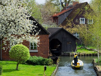 Spreewald Photo credit: berlin.de