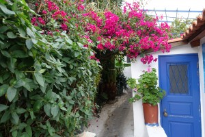 blue door and pink bougainvillea Anafiotika, Athens
