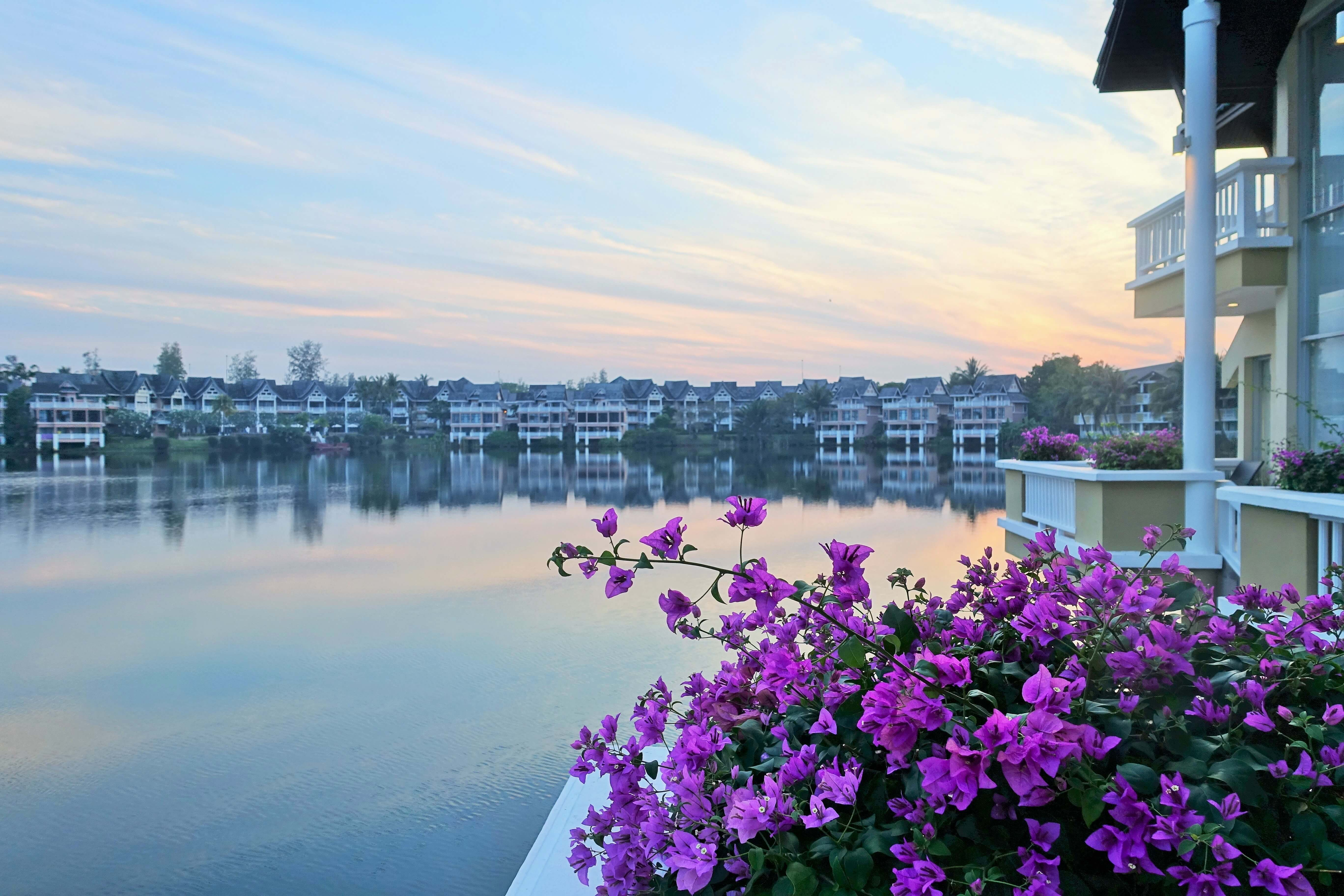 pink bouganvillea on a balcony overlooking a lagoon