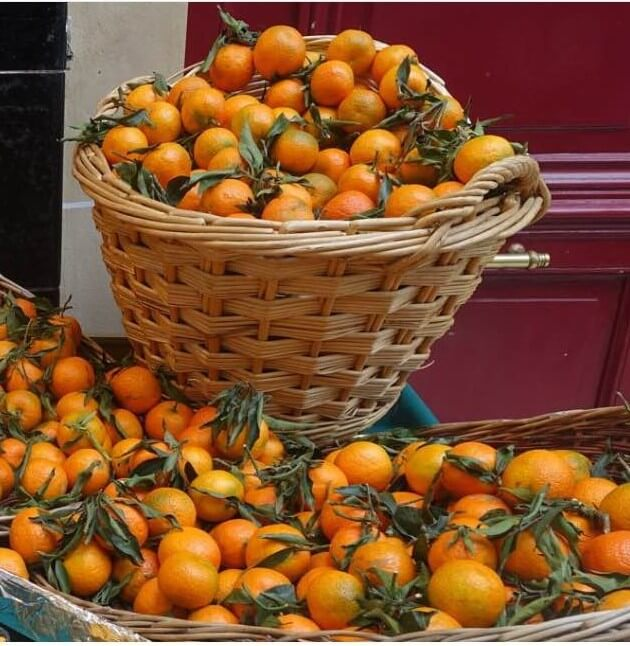 Clementines in the market, Paris