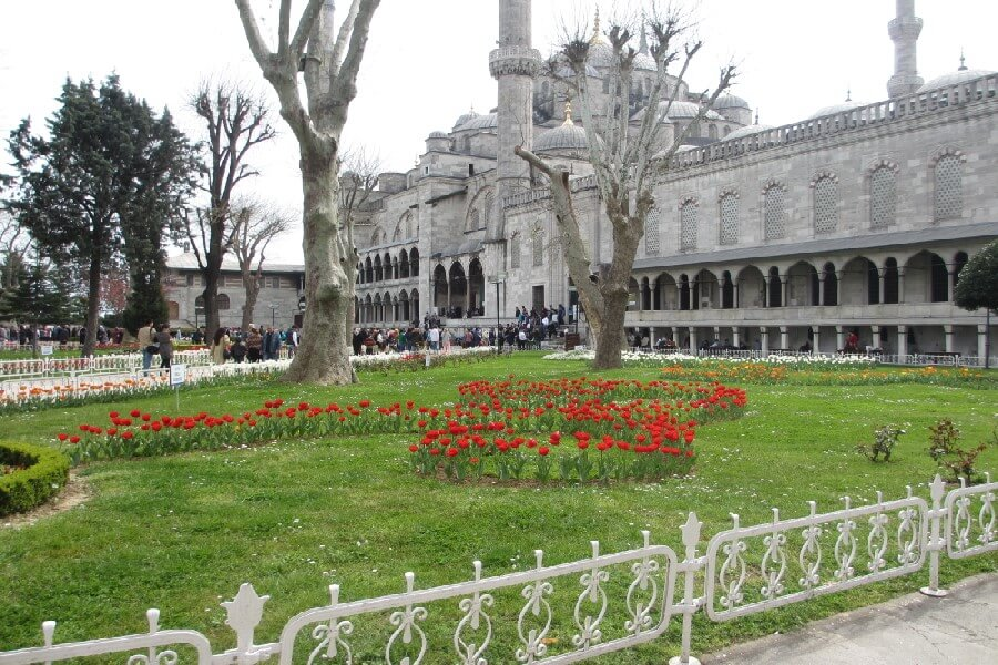The Istanbul tulip festival outside the blue mosque