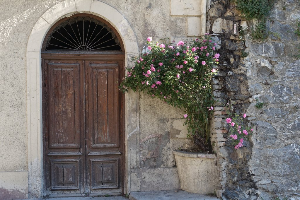 Doorway and roses in Pigna italy Living like a queen at Liguria Holiday Homes in Pigna, Italy
