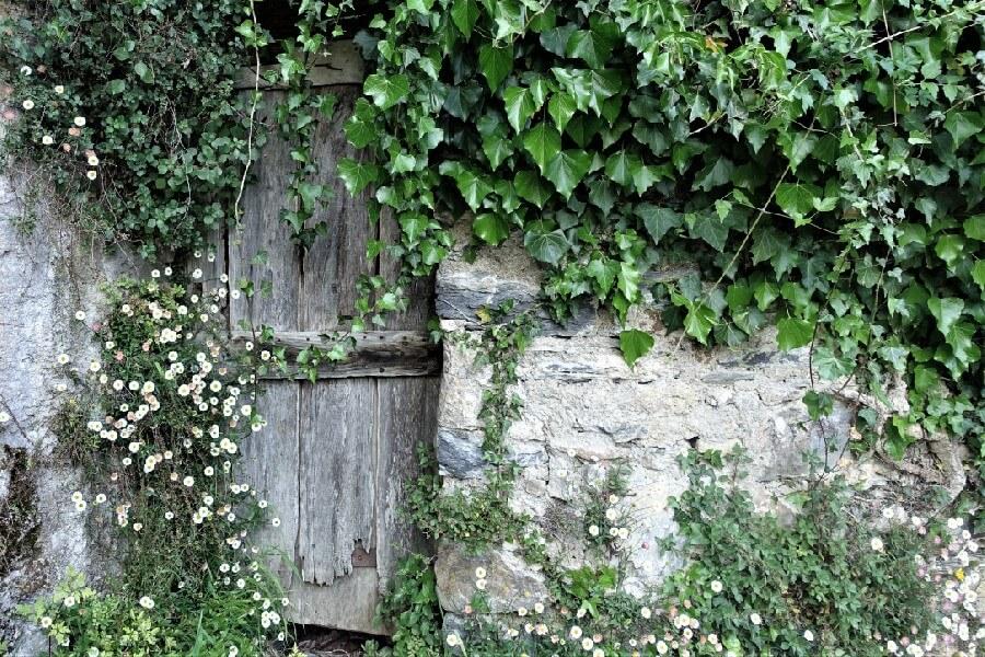 Door way in Pigna Liguria, Cinque Valli Italy, the new Cinque Terre