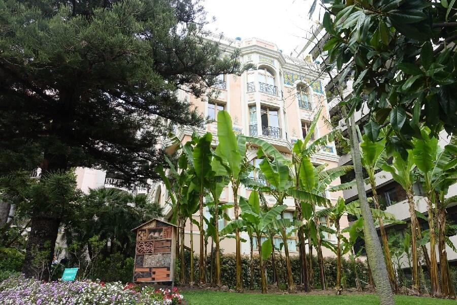 Monaco Botanical Gardens, what to do on a day trip to Monaco