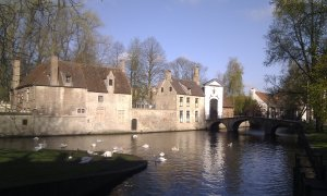 pond in Bruges with swans