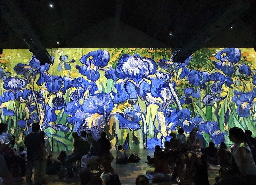 Vincent Van Gogh irises at Ateliers des Lumieres 2019