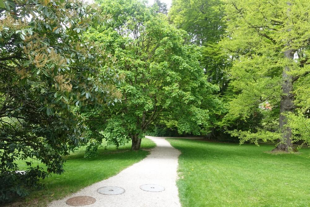 garden path in the Chaplin museum garden Vevey